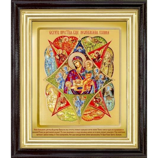 Икона Неопалимая Купина Б. М. ковчег